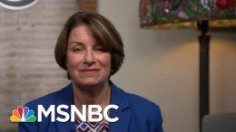Amy Klobuchar: Trump Is Afraid Of The NRA   Hardball   MSNBC 4