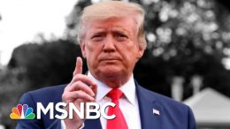 Donald Trump Announces Shakeup Among Top U.S. Intelligence Officials | The 11th Hour | MSNBC 8