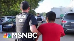 ICE Raid Speaks Louder Than Donald Trump Platitudes On El Paso Shooting | Rachel Maddow | MSNBC 8