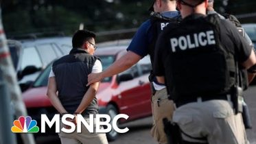 Children Left in Tears After Undocumented Workers Swept Up in ICE Raids - The Day That Was | MSNBC 1
