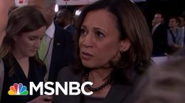 Senator Kamala Harris Says President Donald Trump Sowing Hate Is 'Making Us Weak' | MSNBC 9