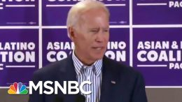 Putting Biden's Gaffes Into Trumpian Perspective | All In | MSNBC 8