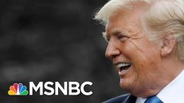 """Trump Predicts """"Meaningful"""" Background Checks In The Wake Of Mass Shootings   The 11th Hour   MSNBC 8"""