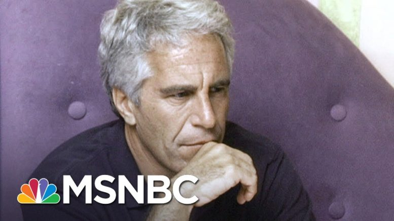 Questions Raised After Epstein Dies After Being Taken Off Suicide Watch | MSNBC 1