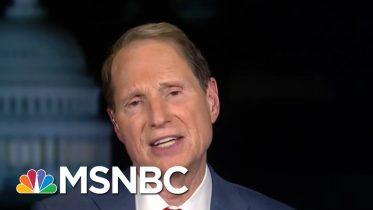 Mitch McConnell Earns 'Moscow Mitch' Moniker Blocking Security Bills | Rachel Maddow | MSNBC 10