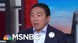 Andrew Yang Proposes 'Personalized' Guns As Way To Stem Violence | Morning Joe | MSNBC 6