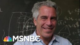 Unfounded Conspiracy Theories Flourish Online Over Epstein's Death | Velshi & Ruhle | MSNBC 5