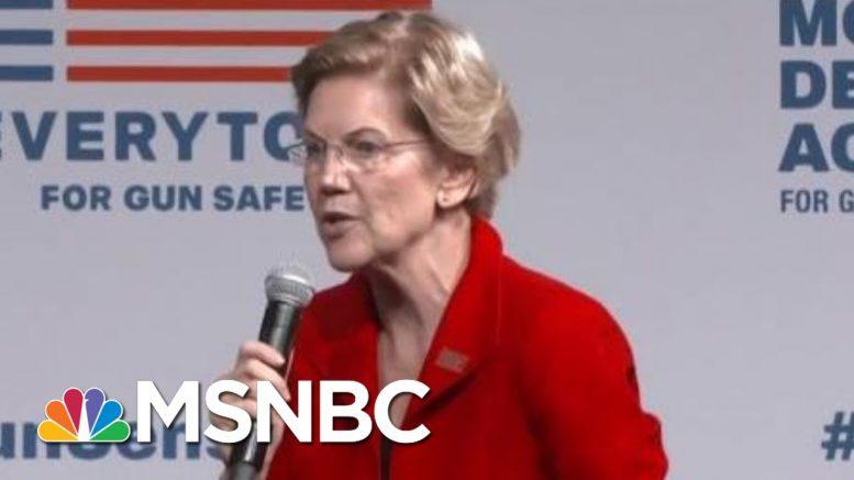 Democratic Candidates Show Unity On Gun Control In Wake Of Shootings | Hardball | MSNBC 1