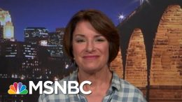 Senator Amy Klobuchar On Her New Gun-Safety Proposal | All In | MSNBC 6