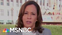 Senator Kamala Harris: Health Care The Number One Issue I Hear About | Morning Joe | MSNBC 6