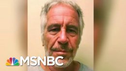 Jeffrey Epstein Death May Put Alleged Co-Conspirators In New Legal Peril | Rachel Maddow | MSNBC 7