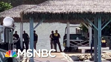 Epstein Victims Distraught After Suicide, Herald Reporter Says   Morning Joe   MSNBC 4