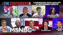 Which Democrats Could Still Make The Next Debate | Velshi & Ruhle | MSNBC 9