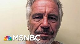 Epstein's Death Shines Light On Trump's Starving Prison System | The Beat With Ari Melber | MSNBC 9