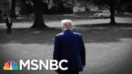 Trump And Senators Are Talking Gun Control, But Will Anything Really Happen?   The 11th Hour   MSNBC 7