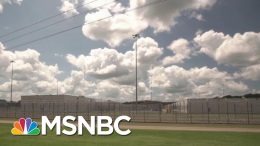 New Border Facilities Holding More Than 8,000 Migrants | Morning Joe | MSNBC 1