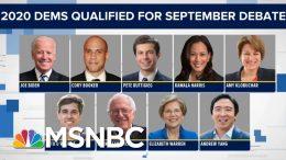 Billionaire 2020 Dem: Unlike Trump, I'll Release My Tax Returns | The Beat With Ari Melber | MSNBC 1