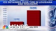 New Frontline In Immigration Battle As Thousands Detained In LA And MS | Andrea Mitchell | MSNBC 2