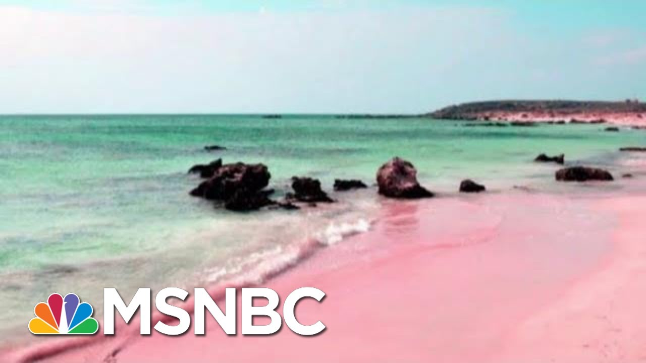 Reports Show NRA's Lavish Spending On Luxuries For Wayne LaPierre | Rachel Maddow | MSNBC 9