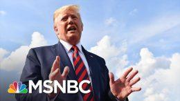 Trump On Gun Reform: 'This Is A Mental Health Problem'   MSNBC 9