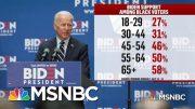 Black Voters: A Central Part Of Democratic Primary Politics | Deadline | MSNBC 3