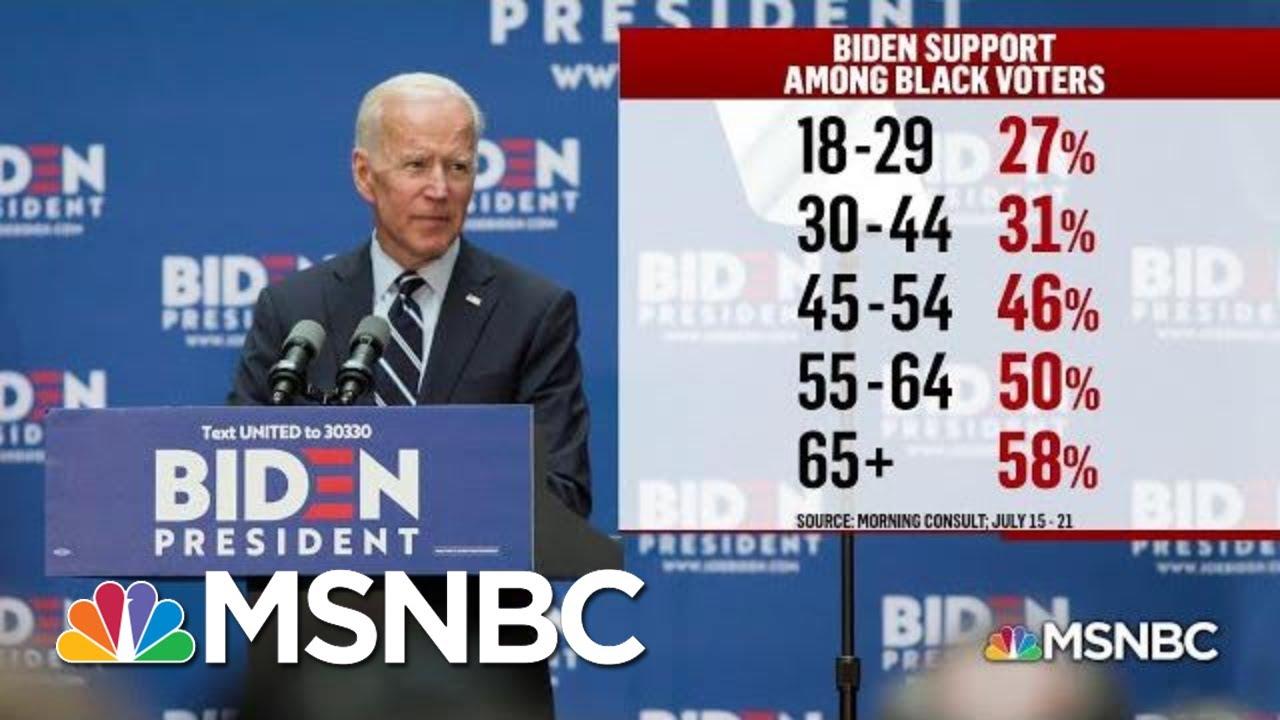 Black Voters: A Central Part Of Democratic Primary Politics | Deadline | MSNBC 1