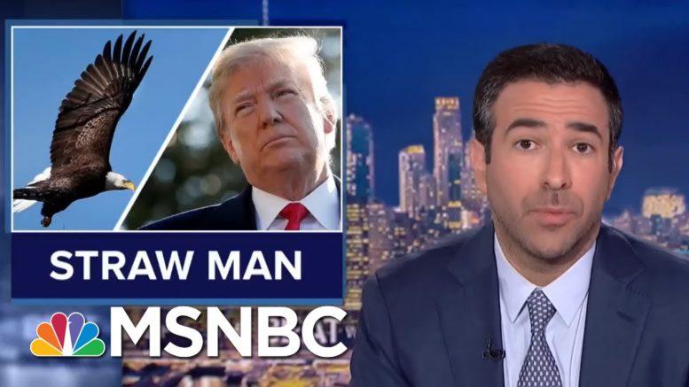New Trump Rule Could Make Panda And Polar Bears Go Extinct | The Beat With Ari Melber | MSNBC 1