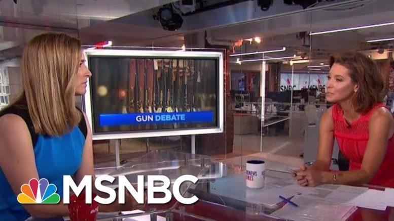 'Recess Rallies' On Gun Reform Held Nationwide | Velshi & Ruhle | MSNBC 1
