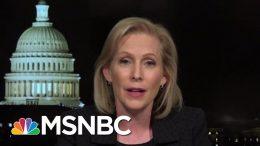 Senator Kirsten Gillibrand On Trump's Reversal On Background Checks | All In | MSNBC 7