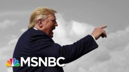 Eugene Robinson: Trump Is 'Raving Like A Lunatic And Everyone Just Shrugs'   The 11th Hour   MSNBC 7