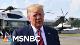 Trump Retreats On Background Check, Blames Mental Health For Gun Violence - The Day That Was | MSNBC 3