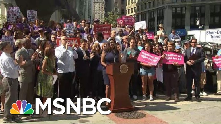 What Is The 'Public Charge' Rule In Lawsuit Against President Donald Trump? | Hallie Jackson | MSNBC 1