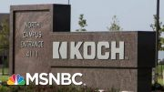 Exploring The Koch Brothers' Political Influence | Velshi & Ruhle | MSNBC 3