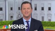 Willie Geist: This Entire Thing 'Is Insane' | Morning Joe | MSNBC 2