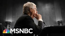 McConnell Takes 'Moscow Mitch' Nickname Home To Kentucky For August Recess | The 11th Hour | MSNBC 3