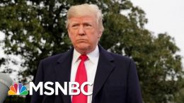 Back To Policies Of Cruelty And Fear, And No Movement On Gun Control | Deadline | MSNBC 5