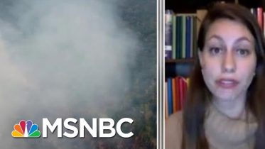 Full Lopes: Amazon Wildfire Will Be Discussed At G-7 Emergency Meeting | MTP Daily | MSNBC 3