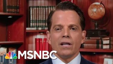 Full Scaramucci: The President Is Having A 'Total Mental Breakdown' | MTP Daily | MSNBC 6