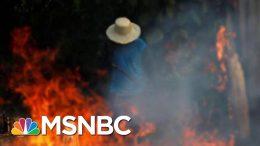 Brazilian President Jair Bolsonaro To Send Troops To Battle Amazon Fires   Hardball   MSNBC 1