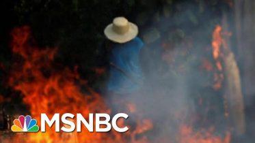 Brazilian President Jair Bolsonaro To Send Troops To Battle Amazon Fires | Hardball | MSNBC 6