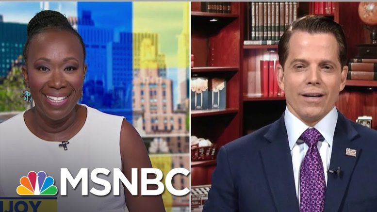 Scaramucci Calls Trump 'Trumpnobyl,' Says 'He's Melting Down'   AM Joy   MSNBC 1