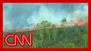 Flying above the Amazon fires: 'All you can see is death' 10