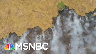 Brazilian Warplanes Dump Water On Amazon Wildfires | Morning Joe | MSNBC 6
