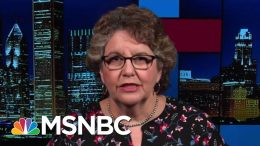 FEC Hobbled By Resignations Going Into 2020 Campaign Season | Rachel Maddow | MSNBC 6