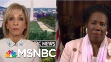 Jackson Lee On Slavery Reparations: 'I Think America Is Ready For This' | Andrea Mitchell | MSNBC 6