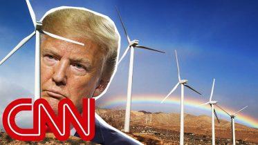 Donald Trump's war on windmills 6