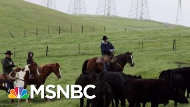 Farmers: Trump's Trade War Leaves Industry 'Worse, Not Better' | The Beat With Ari Melber | MSNBC 9