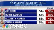 President Donald Trump Lagging Behind Democrats In 2020 Matchups | Hardball | MSNBC 3