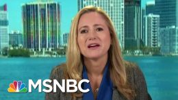 'We Are Still Recovering': House Member On Diverting Funds   Morning Joe   MSNBC 4