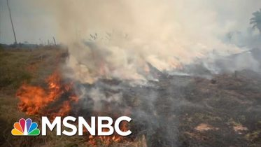 Ramping Up Climate Crisis: Trump's New Environmental Rollback | All In | MSNBC 6